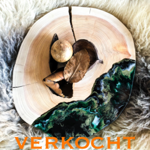 resin-boomstamplank-decoratie-epoxy-decoration-interior-cheeseboard-crooked-forest-resinart